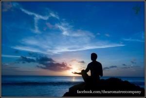 Meditation Evenings